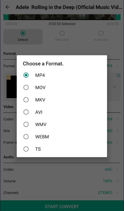 Choose a Video Format